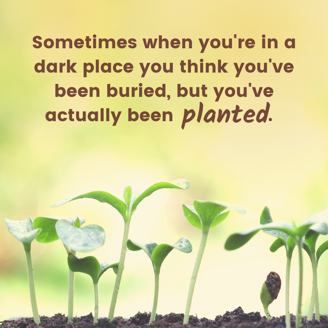 Sometimes when you're in a dark place you think you've been buried, but you' ve actually been planted